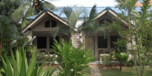 Best Places in Thailand Krabi Forest Homestay