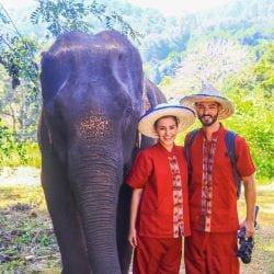 Elephant Nature Park in Chiang Mai Thailand with Chase Your Adventure Tours