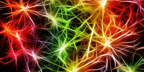 Neuroplasticity to help overcome fears and live your dream life
