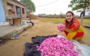 Girl holding pink roses in Pushkar India Rajasthan while Visiting Pushkar India