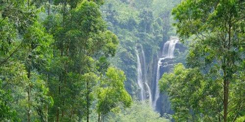 Puna Ella Things to do in Nuwara Eliya, Sri Lanka