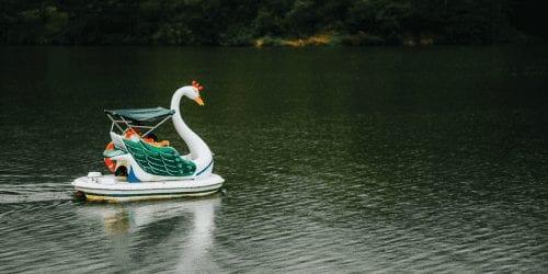 Swan Boat on Lake Gregory Things to do in Nuwara Eliya, Sri Lanka